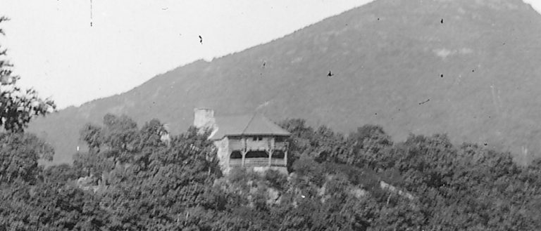 Biltmore's Buckspring hidden in the forest of the Blue Ridge Mountains.