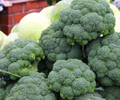 Broccoli and cabbage on a market table.