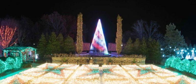 A winter lights exhibit at the NC Arboretum.