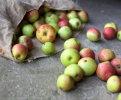 Apples spilling out of a bag.