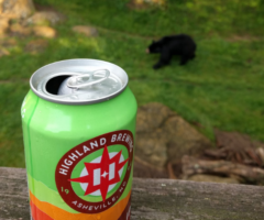 An open bear can with a black bear in the background.