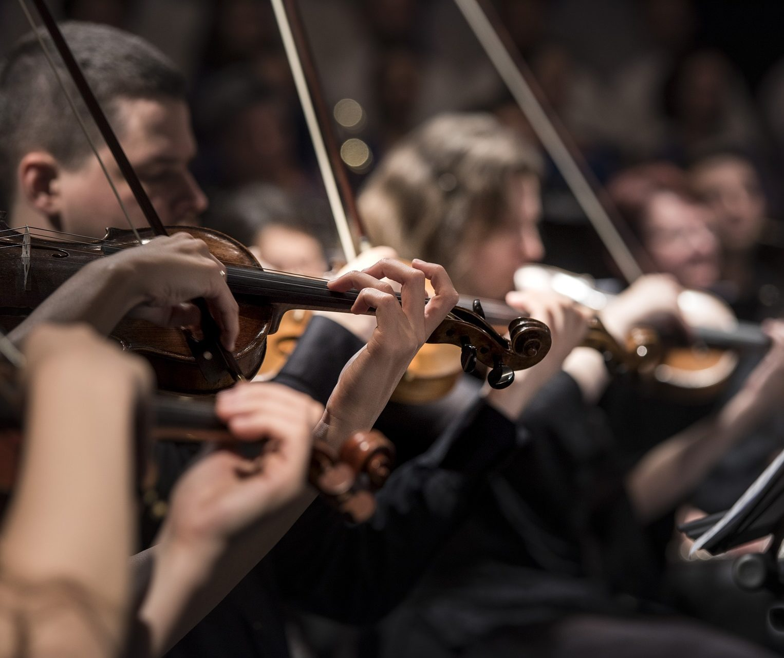 Musicians in a symphony performance.