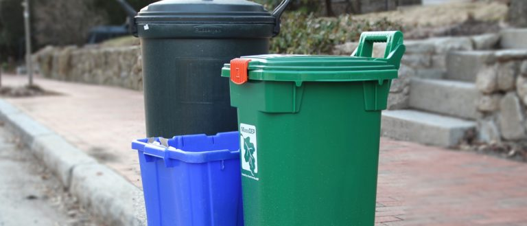 Curbside recycling and trash containers.