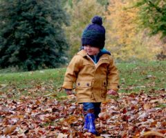 A child playing in fall leaves.