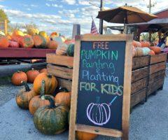 Pumpkins and a pumpkin painting sign at a farm.