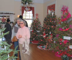 People perusing a room of Christmas trees.