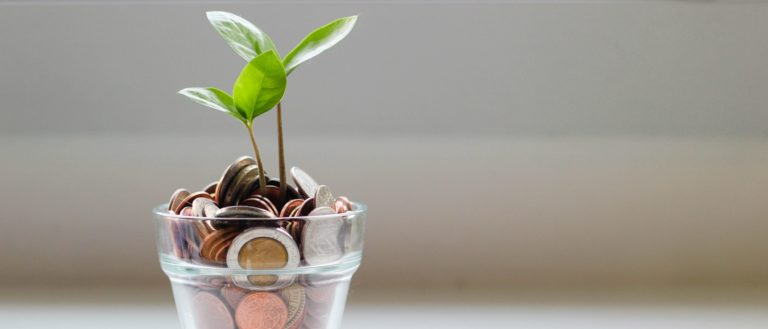 A jar of coins with a plant growing from it.
