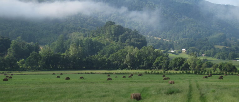 A wide field of grass in front of mountains.