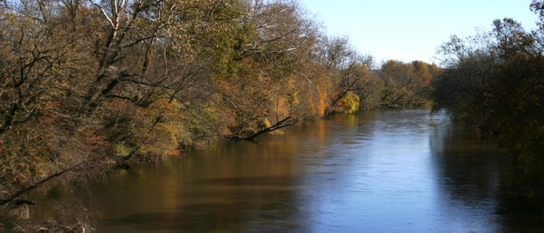 A wide river running through a canopy of trees.