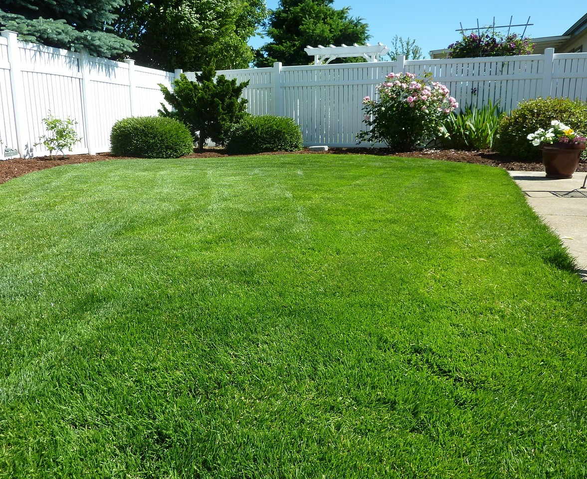 The Easy Way To A Greener Healthier Yard Greenville Com