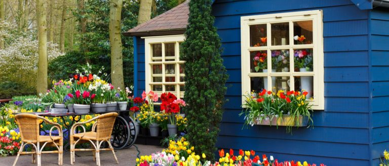 An arrangement of flowers and tulips in front of a gardening store.