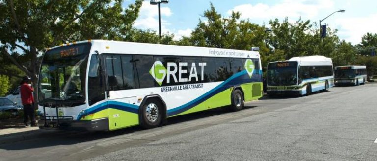 A line of Greenlink buses on a street.