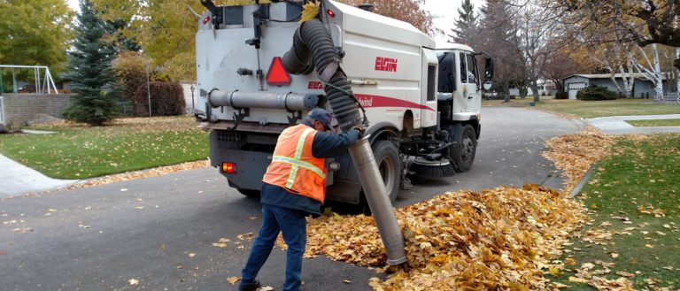 City workers collecting piles of leaves.