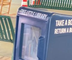 """A blue """"little library"""" box."""