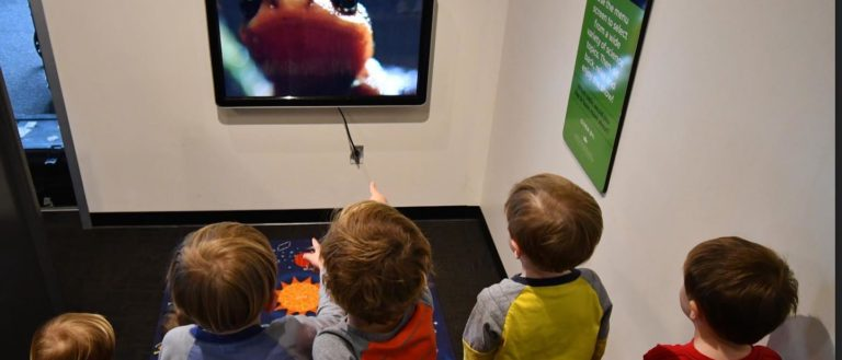 Children watching a video lecture on animals at Spartanburg Science Center.