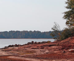 The banks of Lake Hartwell after the impact of drought on South Carolina's natural resources.